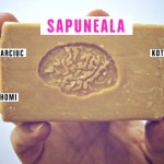 Театру Spalatorie 1 год: SAPUNEALA