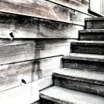Книги: Джон Стейнбек «Благостный четверг»