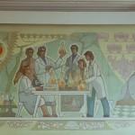 Институт Пищевых Технологий: мясная вода, сублимированная малина, чашка Петри и промывалка Друг