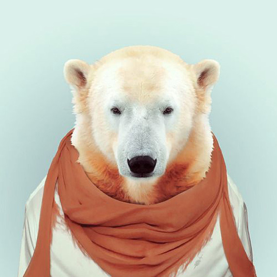 Fashion-Zoo-Animals13