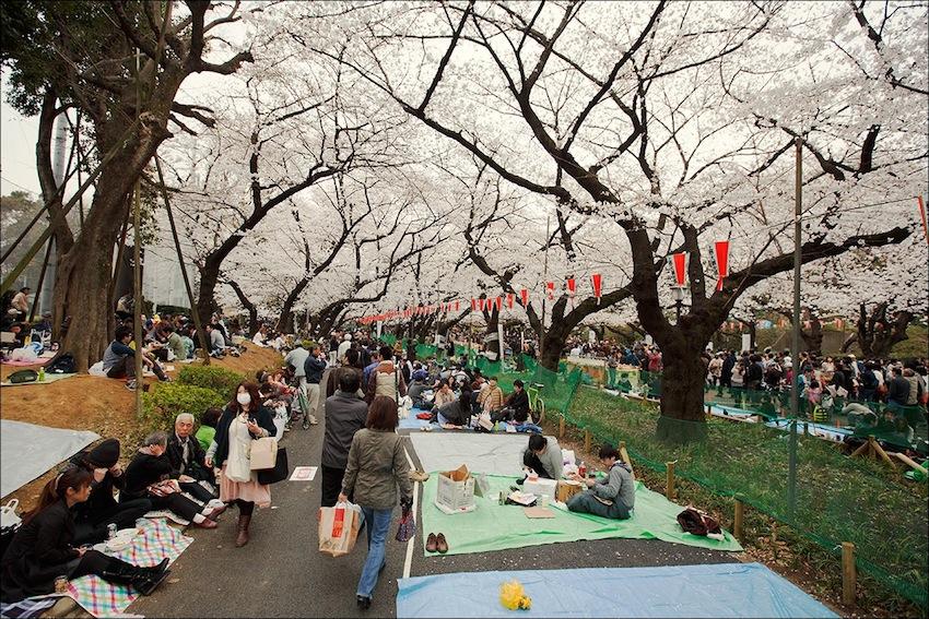 Дофига народа конечно в выходные... @Ueno Park — in Tokyo, Japan.