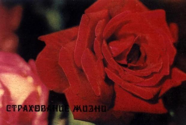 asigurarea-MSSR-Moldavia-85-17
