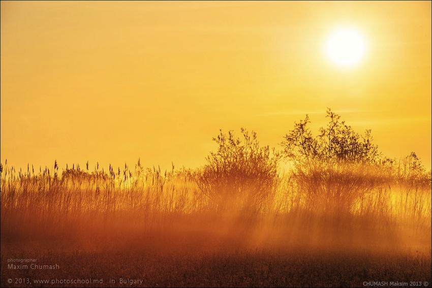 photoshool-Rybalev-011