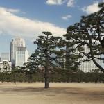 Токио глазами наших