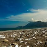 Путешествия: Чирали Yoga Life