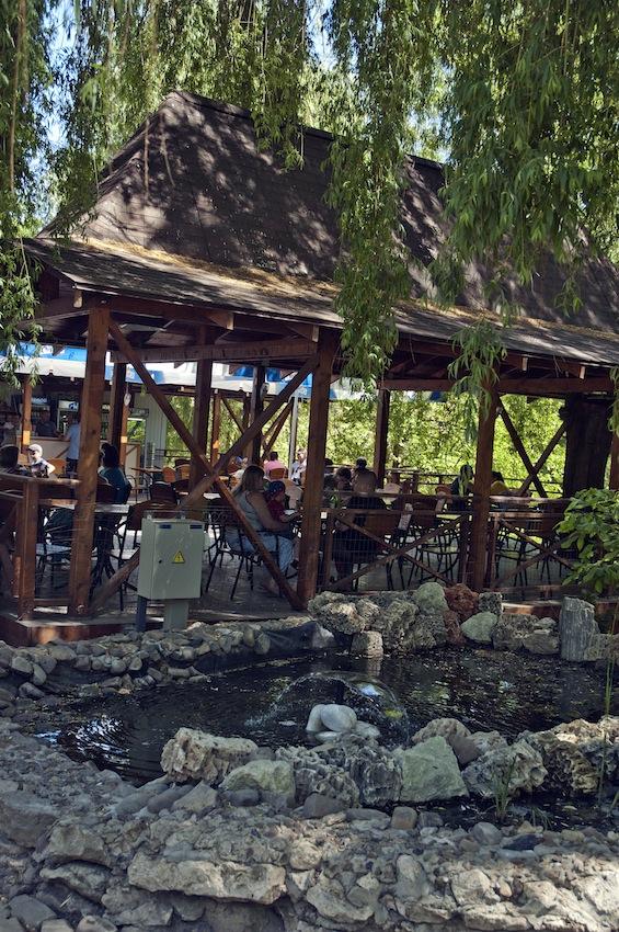 chisinau-zoo-cafe