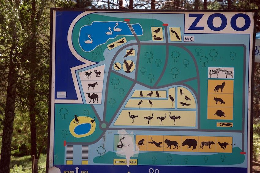 zoo-chisinau-2013