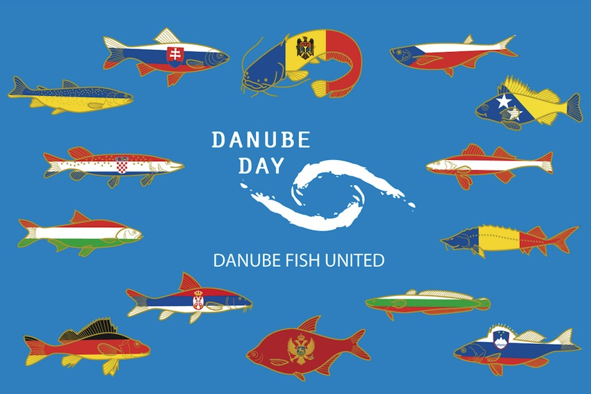 DunabeFish