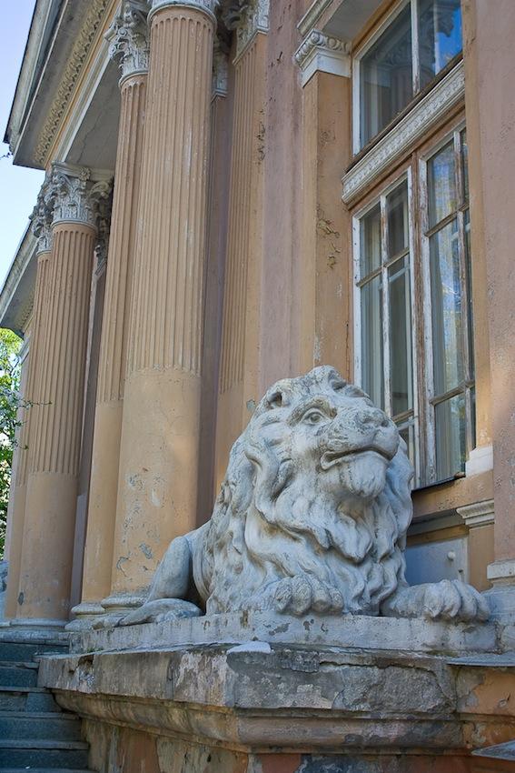 львы на заднем крыльце органного зала