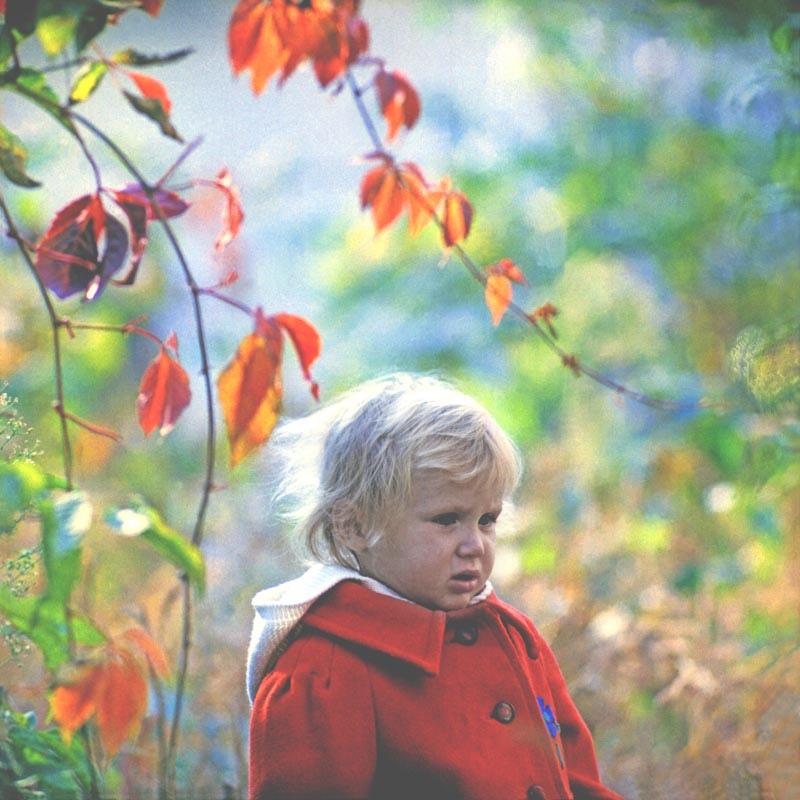 Small autumn (80's)