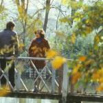 Молдавская осень в фотографиях Иона Кибзий