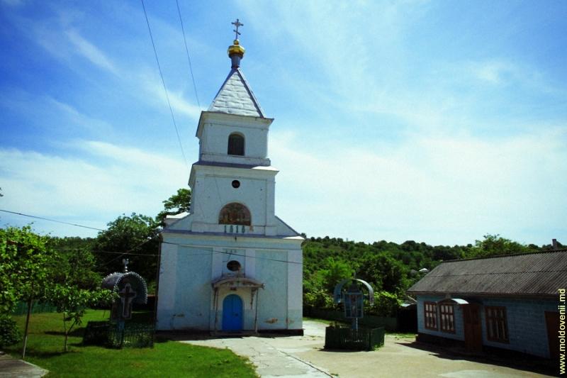 lapusna-02-moldovenii