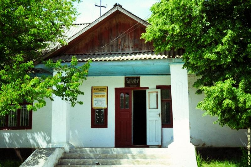 lapusna-04-moldovenii