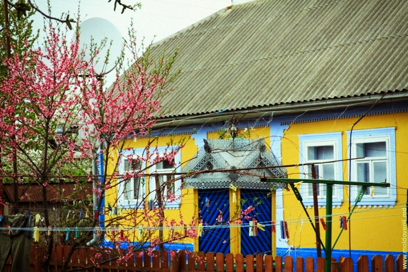 lapusna-11-moldovenii