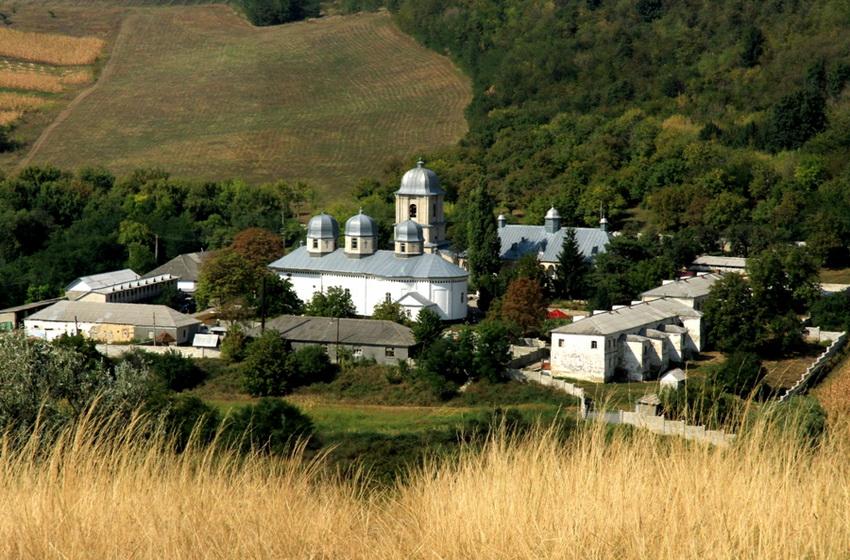 Вид на монастырь и окрестности с горы Голгофа