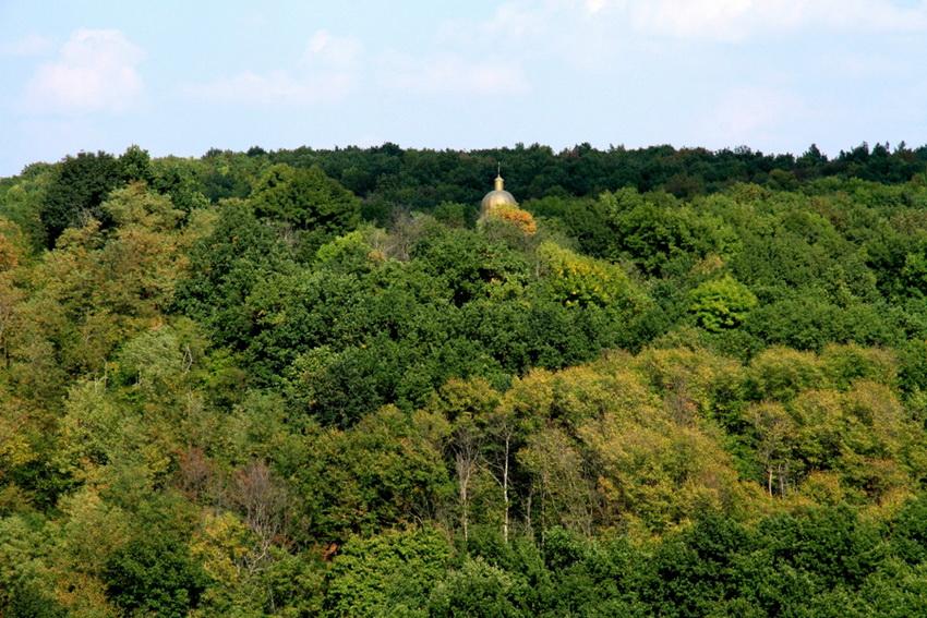 Купол скита в лесном массиве вблизи монастыря Добруша, Шолдэнешть