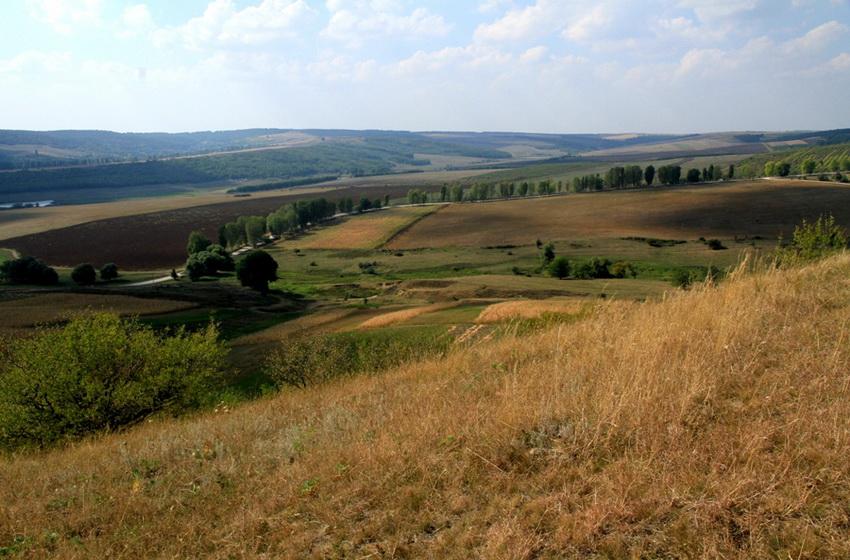 Окрестности Добрушского монастыря
