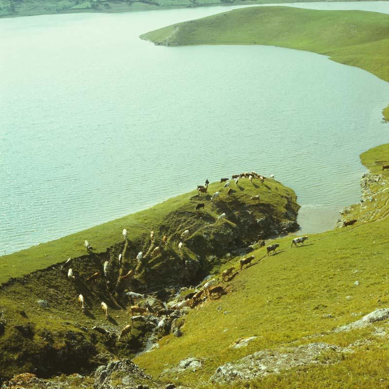 Река Чухур, 80-е годы