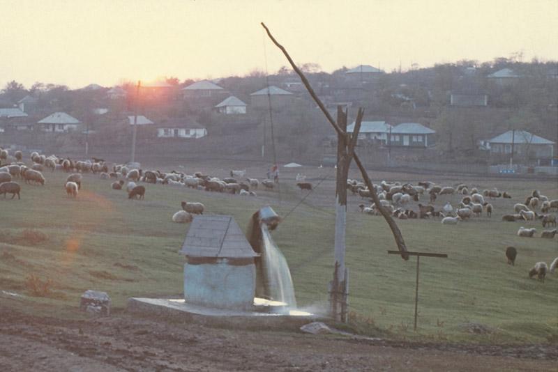 Село Обрежа, Фалештский район, 1980 г.