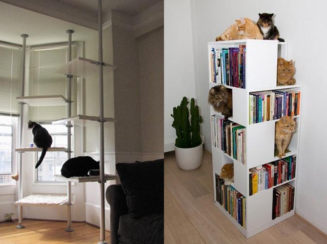 cats-lab