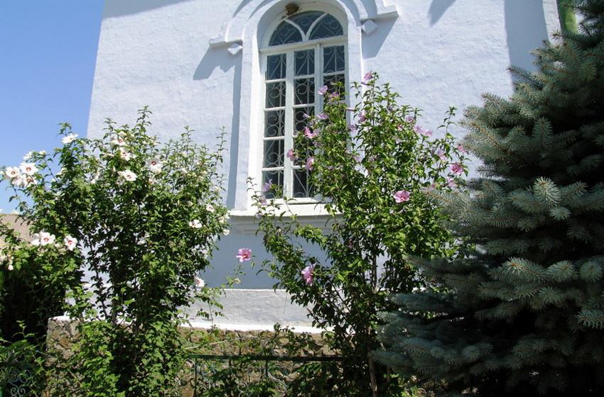 Тюльпанные деревья у стен летней церкви