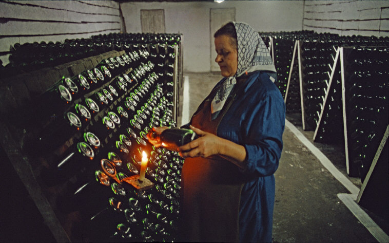 MOLDAVIA. Kishinev. Part of agricultural and industrial firm Kriouliany. 1988.