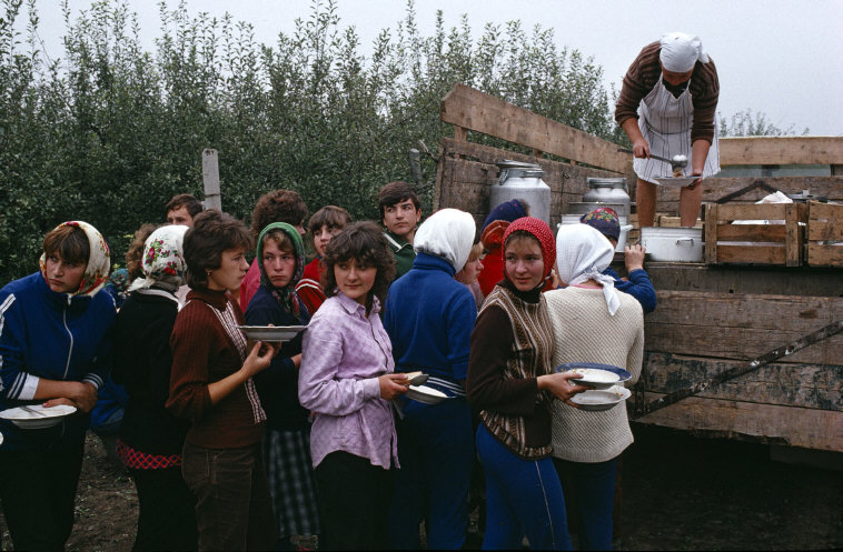 MOLDAVIA. Near Soroki. Collective farm. 1988.