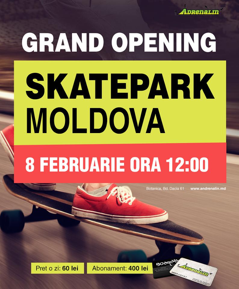 skate-park3