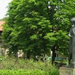 Чиновники хотят отдать дом-музей Пушкина под общепит