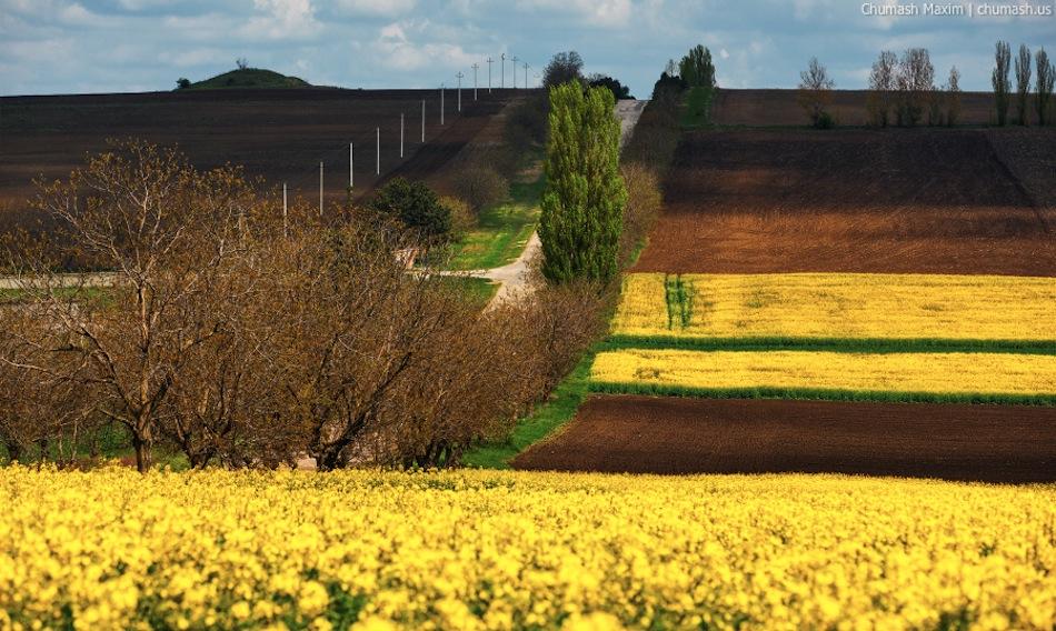 Maxim-Chumash-landscape-moldova-2014-015
