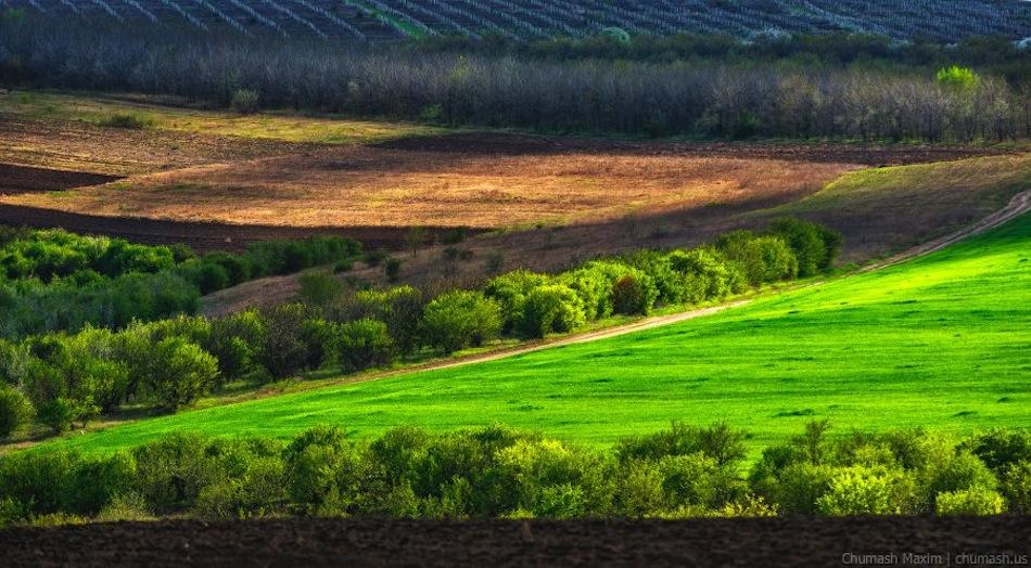 Maxim-Chumash-landscape-moldova-2014-05