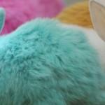 Самые знаменитые кролики мира