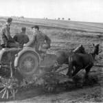 Бессарабия глазами немецких солдат (1941 год)