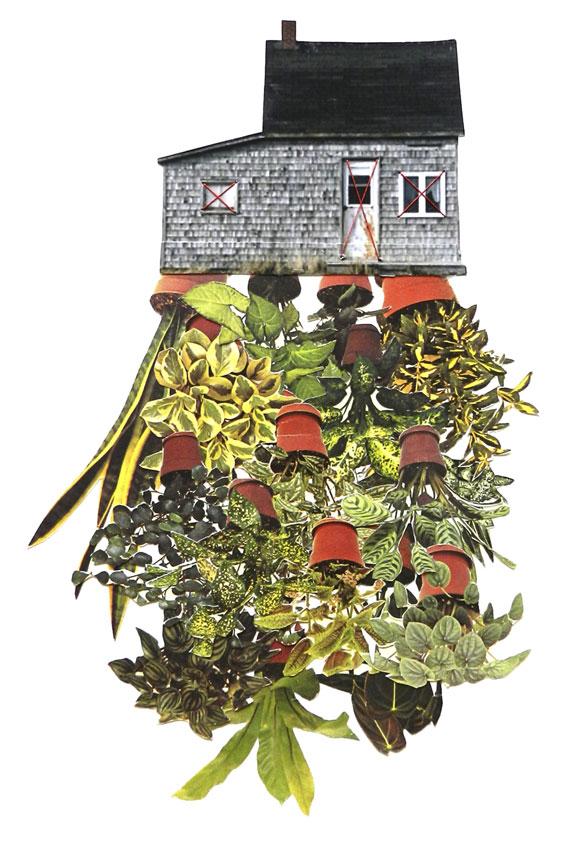 1_room-plant