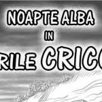 NOAPTE ALBA IN BECIURILE CRICOVA