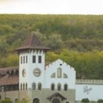 В развитии молдавского «Винного пути» примут участие румынские специалисты