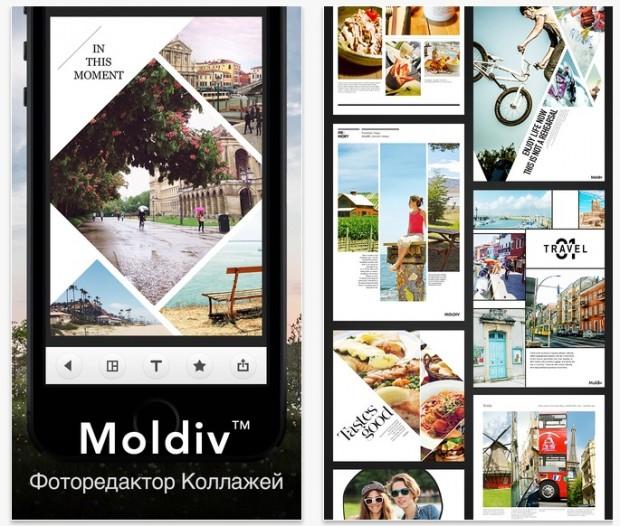 moldiv_locals