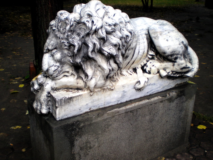 01-lev-oldchisinau_com-lions-02