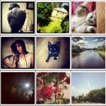 Первый в мире бесплатный сервис для поиска и сортировки популярных фотографий в Instagram