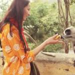 Видео: Наши в Индии