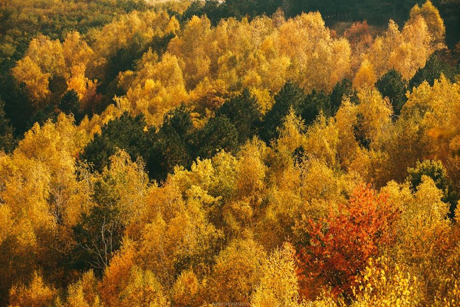 maxim-chumash-fall-2014-moldova-7