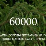 Цифра дня: во сколько обойдется главная новогодняя елка