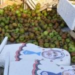 Центр Кишинева завалили яблоками
