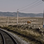 Видео: из Москвы в Пекин на поезде