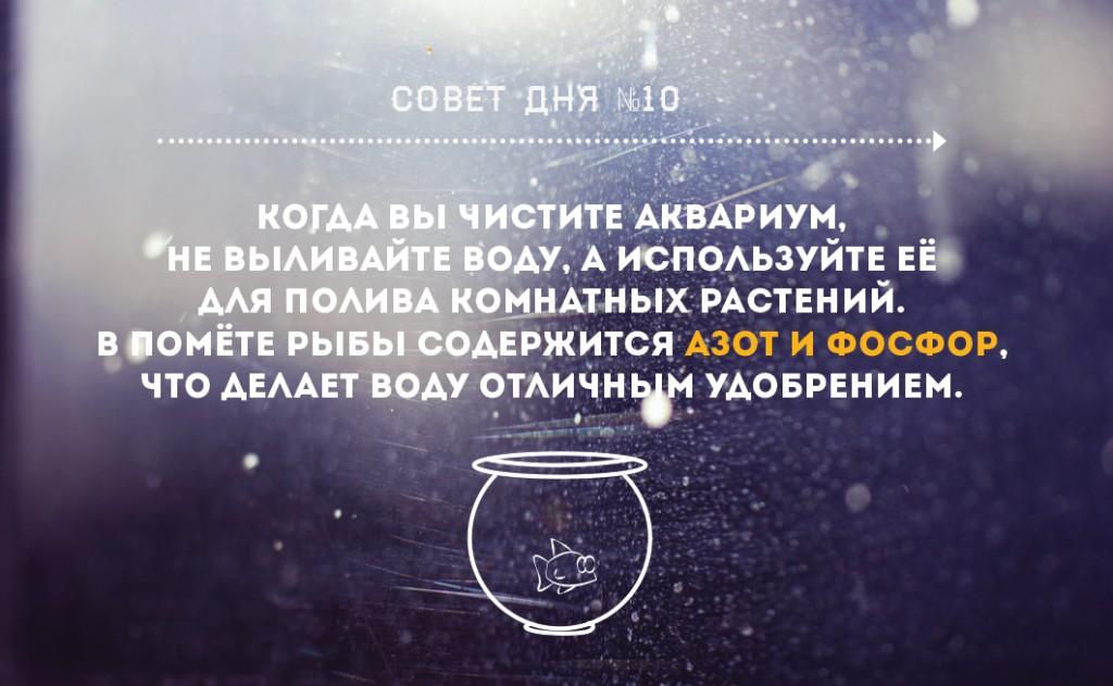 Безымянный11