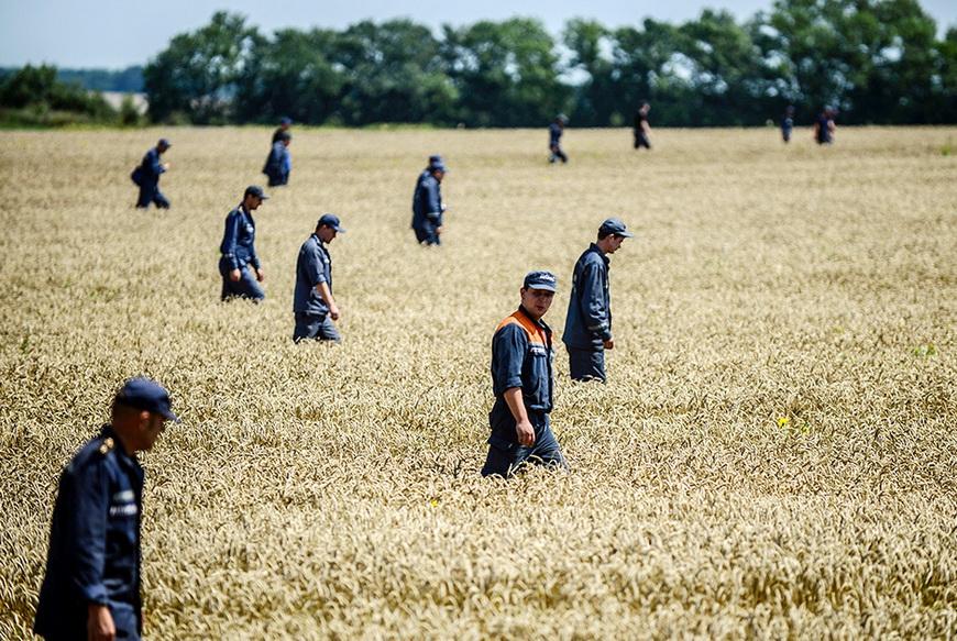 Сотрудники скорой помощи ищут останки тел на месте крушения малайзийского «Боинга». 26 июля, Донецкая область (Украина). Фото: Bulent Kilic / AFP