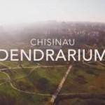 Видео: Кишиневский дендрарий