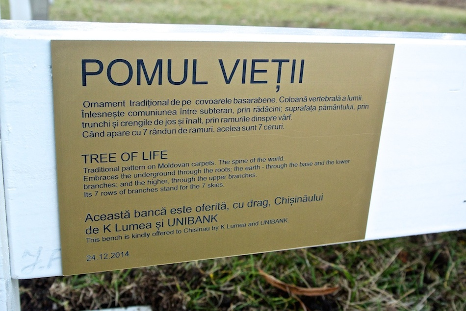 pomul-vietii10