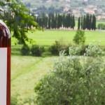 Молдавские вина продаются на монопольном рынке Норвегии
