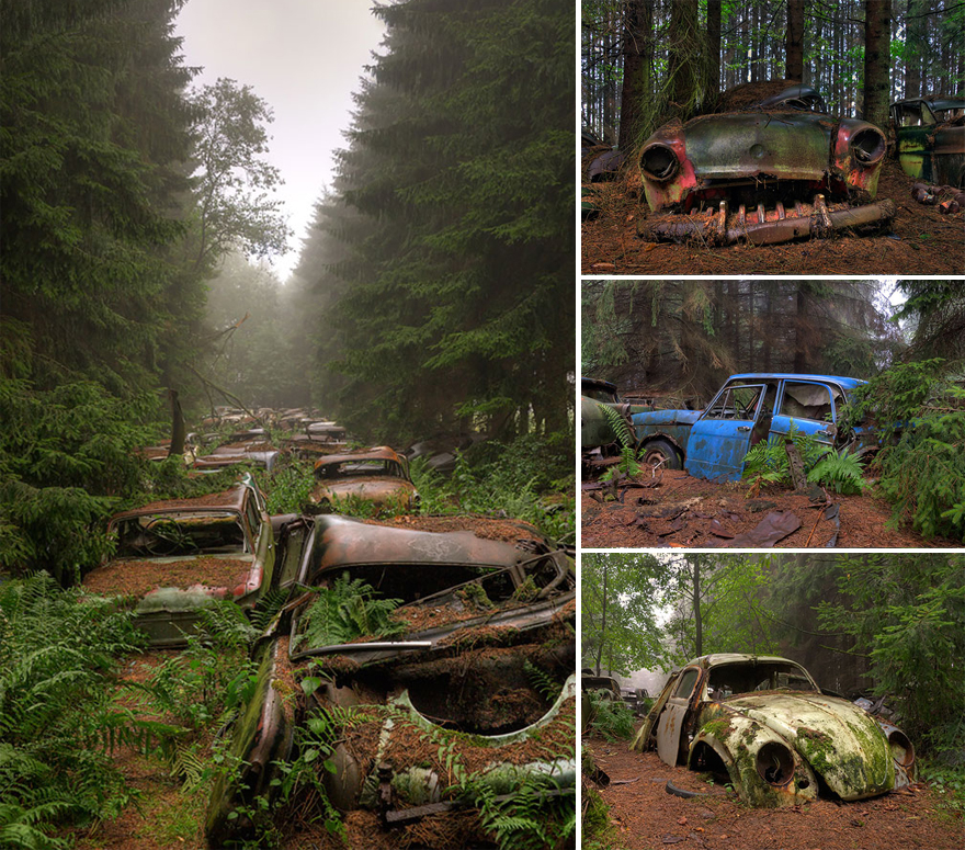 nature-reclaiming-abandoned-places-wcth08